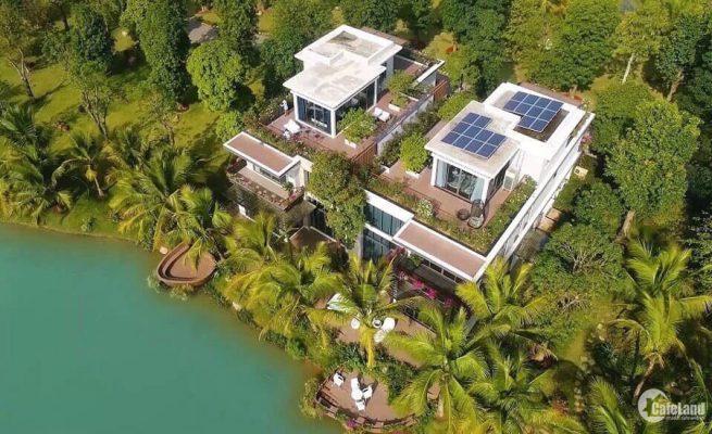 Biệt thự đảo lớn Ecopark